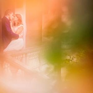 sesja ślubna Oblęgorek